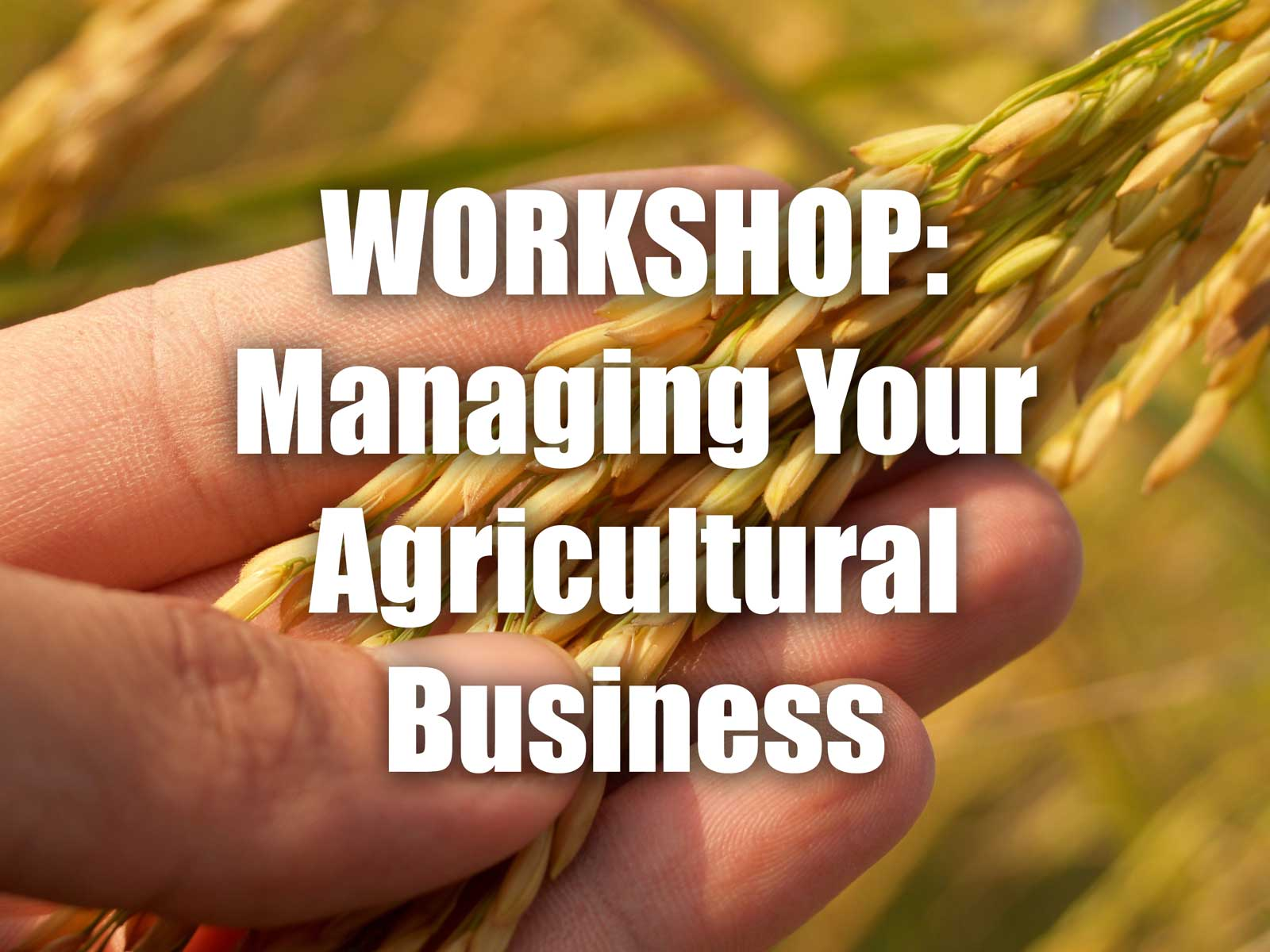 AgriculturalBusinessWorkshop